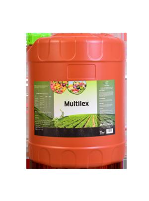 Multilex